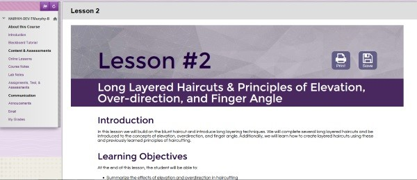An online image from the template of Professor Taunya Murphy's hybrid course in the Hairstyling Program.