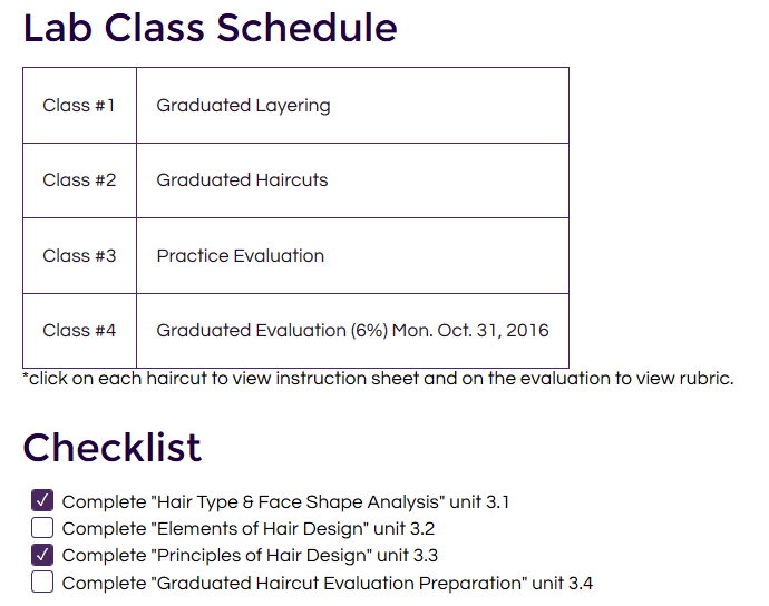 An online image outlining the schedule of lab classes in Professor Taunya Murphy's hybrid course in the Hairstyling program.
